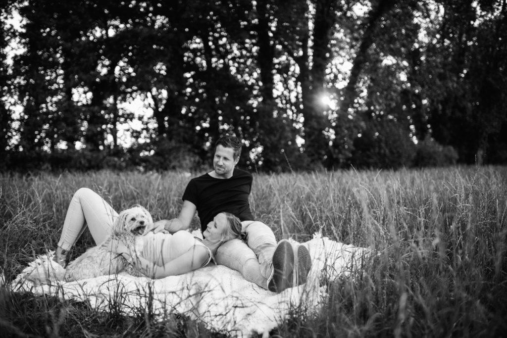 evelyn boergers bildergeschichten und auf einmal 11